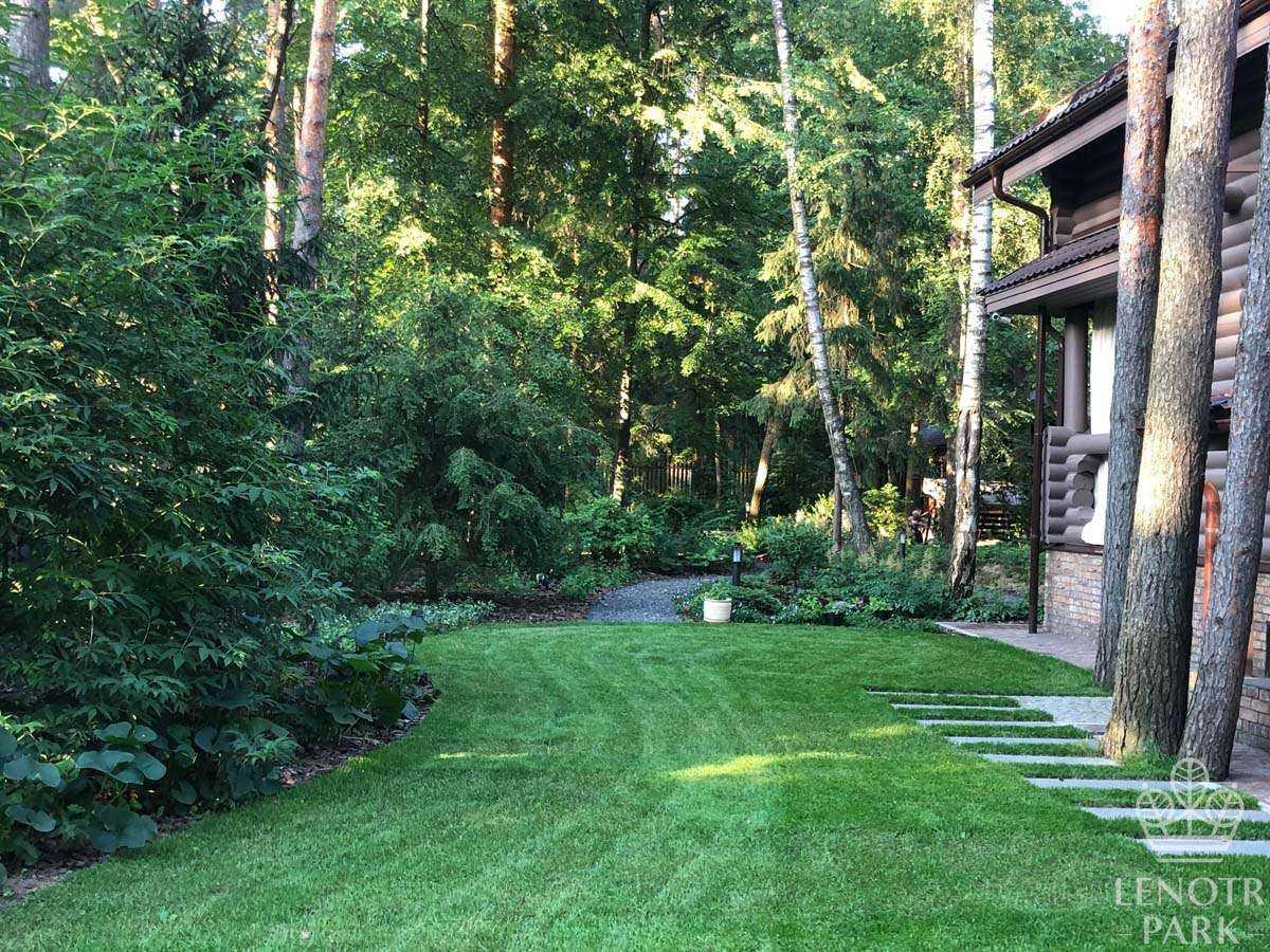 Озеленение придомового участка