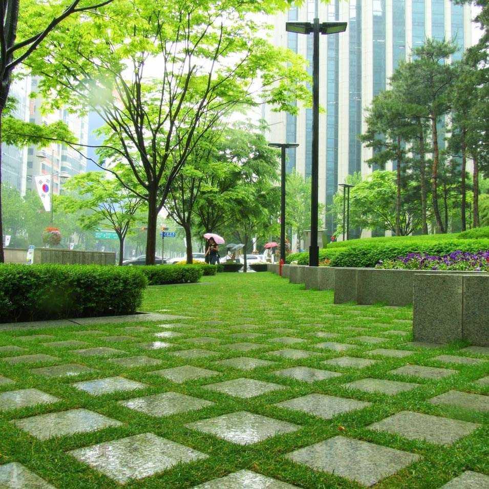 Роль озеленения